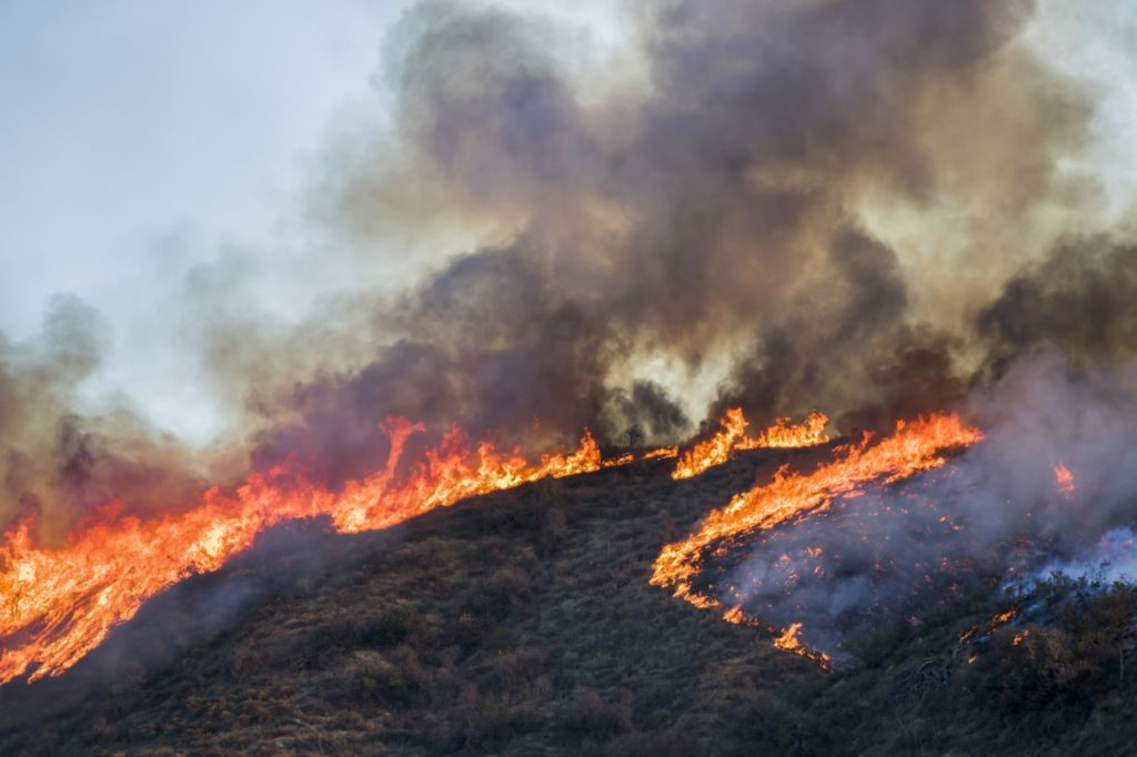 fire season, wildfire burns across california hillscape